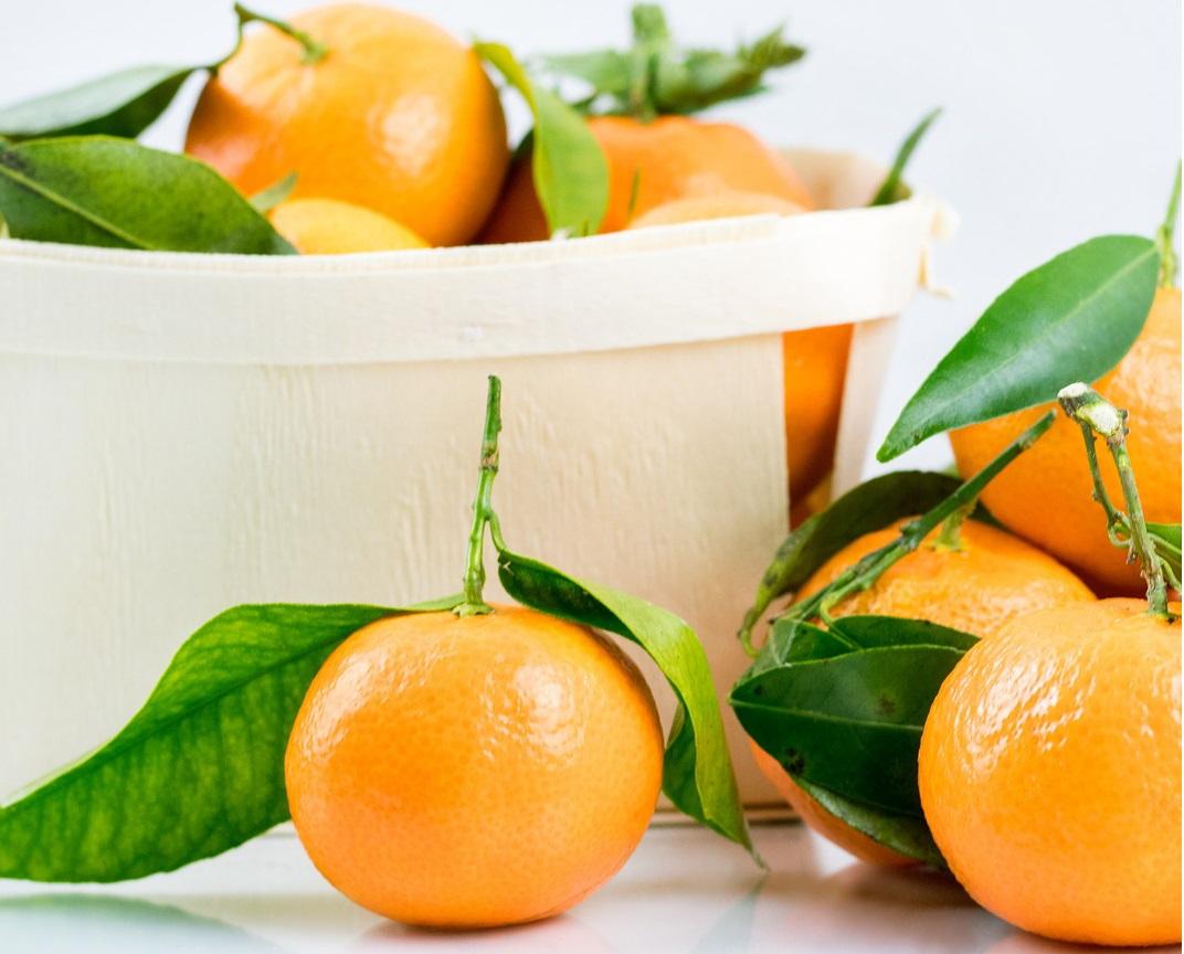 高甜度柳橙濃縮汁-墨西哥