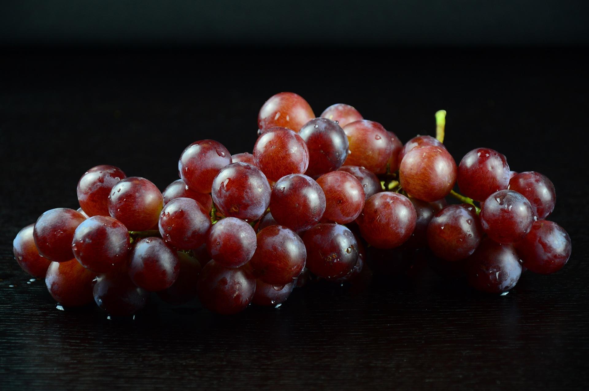 CONCORD紅葡萄濃縮汁