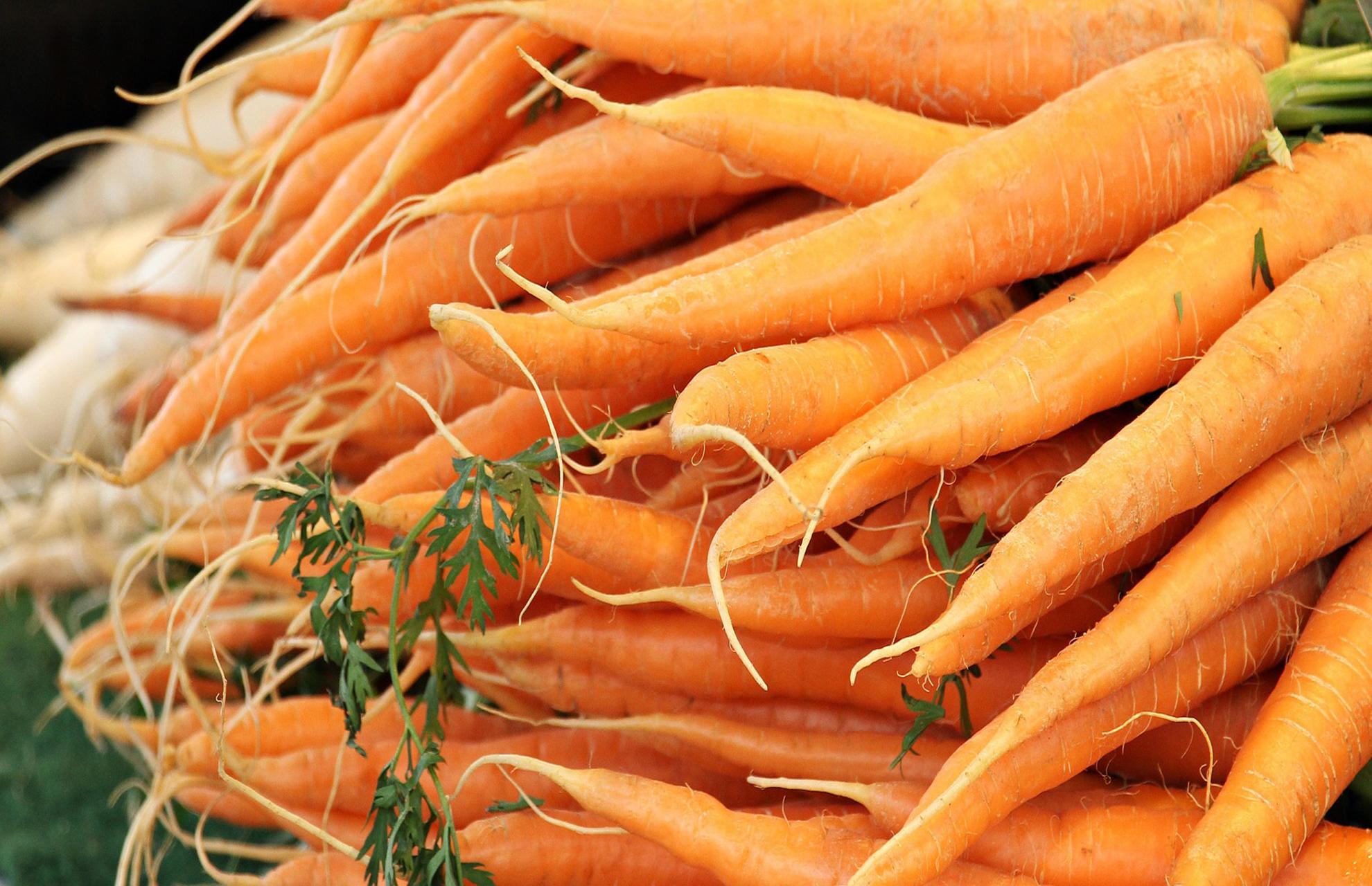 胡蘿蔔濃縮汁